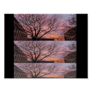 Perfect Sunset Poster