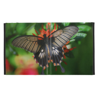 Perfect Swallowtail Butterfly iPad Folio Case