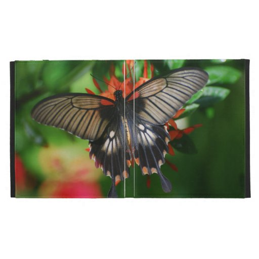 Perfect Swallowtail Butterfly iPad Folio Cases