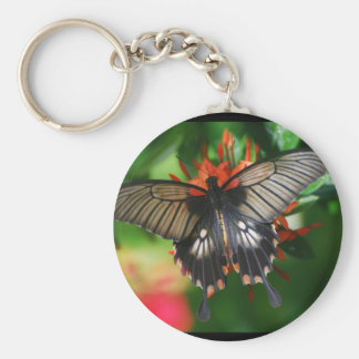 Perfect Swallowtail Butterfly Keychain