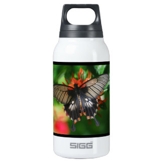 Perfect Swallowtail Butterfly 10 Oz Insulated SIGG Thermos Water Bottle