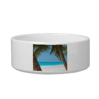 Perfect Tropical Paradise Beach Bowl
