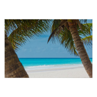 Perfect Tropical Paradise Beach Poster