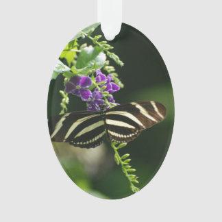 Perfect Zebra Butterfly
