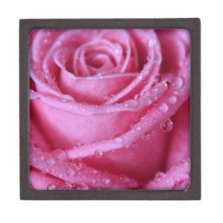 Perfectamente rosa caja de regalo de calidad