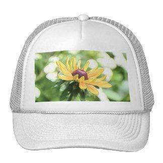 Perfection - Black Eyed Susan Trucker Hat