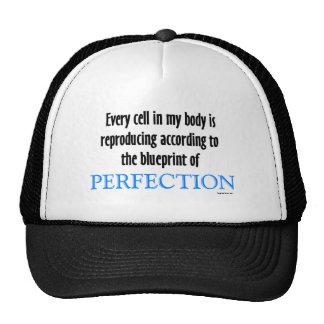 Perfection blueprint mesh hats