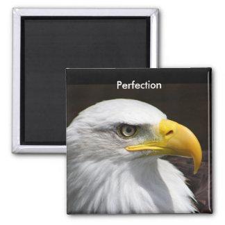 Perfection Fridge Magnets