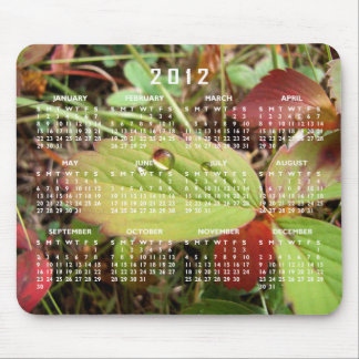 Perfection in Droplet Form; 2012 Calendar Mouse Pad
