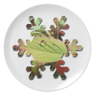 Perfection in Droplet Form; Merry Christmas Dinner Plate