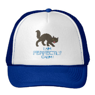 Perfectly Calm Hat