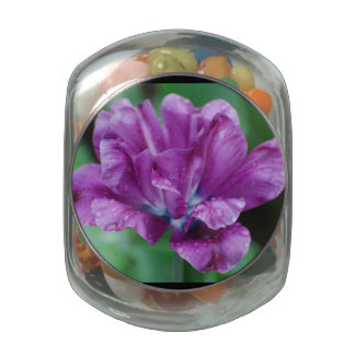 Perfectly Purple Parrot Tulip Glass Candy Jar