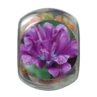 Perfectly Purple Parrot Tulip Glass Jars