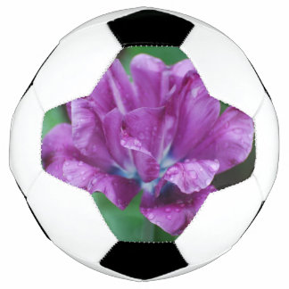 Perfectly Purple Parrot Tulip Soccer Ball