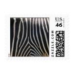 Perfectly Zebra Print Postage Stamp
