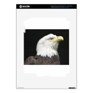 Perfil americano de Eagle calvo iPad 3 Pegatinas Skins