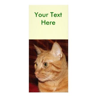 Perfil anaranjado de la cara del gato de Tabby Diseño De Tarjeta Publicitaria