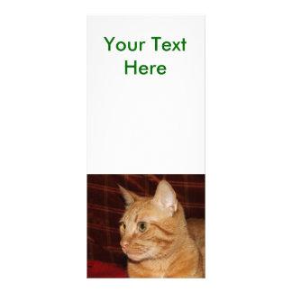 Perfil anaranjado de la cara del gato de Tabby Tarjeta Publicitaria Personalizada