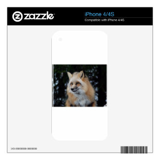 Perfil bonito del Fox Skins Para eliPhone 4
