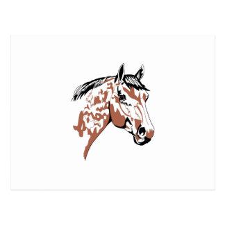 Perfil de la cabeza de caballo tarjetas postales