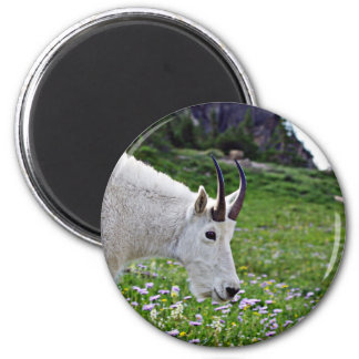 Perfil de la cabra de montaña imán redondo 5 cm