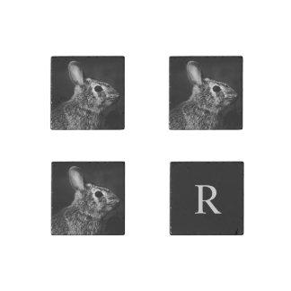 Perfil de la derecha de conejo de conejito del imán de piedra