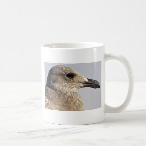Perfil de la gaviota taza de café