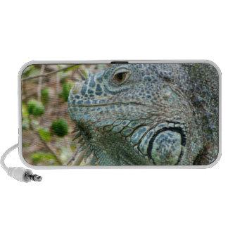 Perfil de la iguana iPhone altavoz