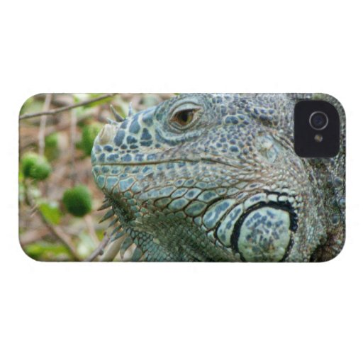 Perfil de la iguana Case-Mate iPhone 4 coberturas