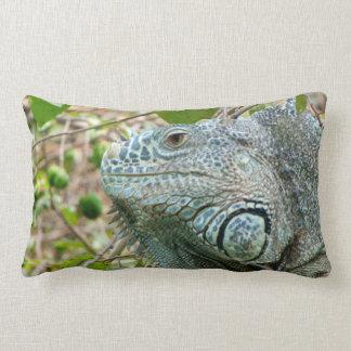 Perfil de la iguana cojín