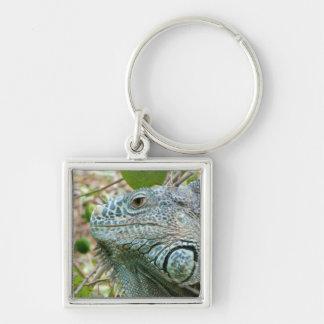 Perfil de la iguana llavero cuadrado plateado