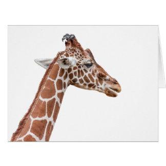 Perfil de la jirafa tarjeta de felicitación grande