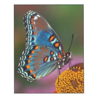 Perfil de la mariposa en una flor impresión en madera
