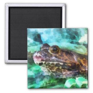 Perfil de la rana mugidora imán cuadrado