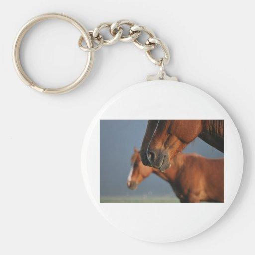 Perfil de los caballos llavero redondo tipo pin