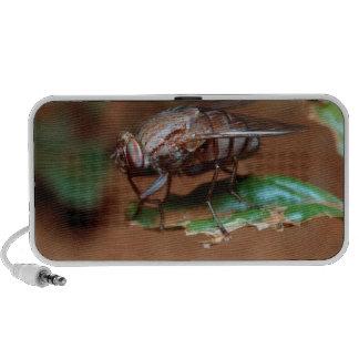 Perfil de robo de la mosca de la hormiga iPhone altavoz