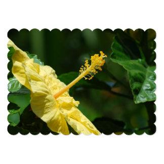 """Perfil de un hibisco amarillo invitación 5"""" x 7"""""""