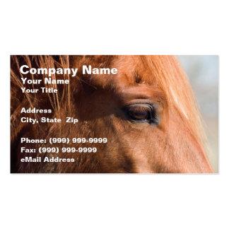 Perfil del caballo plantilla de tarjeta personal