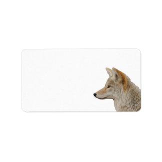 Perfil del coyote etiquetas de dirección