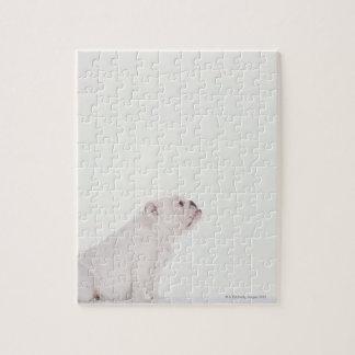 Perfil del dogo blanco puzzle