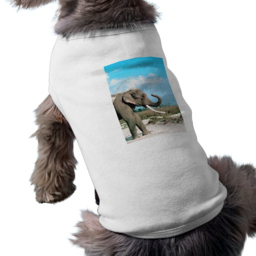 Perfil del elefante camisetas mascota
