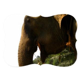 """Perfil del elefante invitación 5"""" x 7"""""""