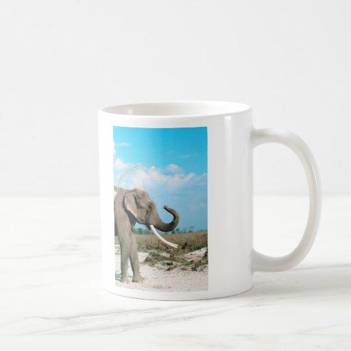 Perfil del elefante taza clásica