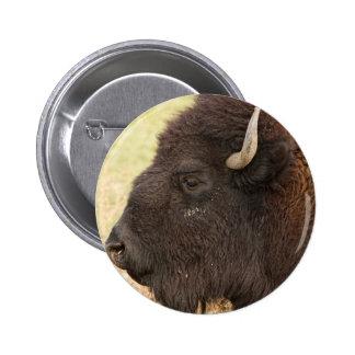Perfil del Headshot del bisonte Pin