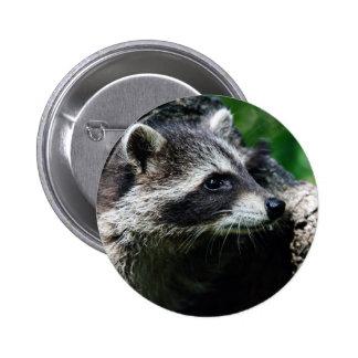 Perfil del mapache pin redondo 5 cm