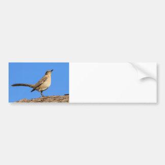 Perfil del Mockingbird Pegatina De Parachoque