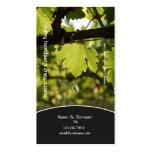 Perfil del negocio de la uva del viñedo del lagar plantillas de tarjetas de visita