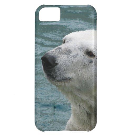 Perfil del oso polar