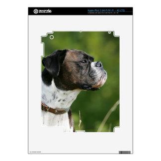 Perfil del perro del boxeador pegatinas skins para iPad 3