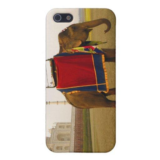 Perfil lateral de un elefante, el Taj Mahal, la In iPhone 5 Coberturas